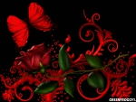 RED ROSE WITH RED BUTTERFLY