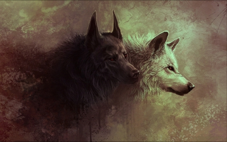 Wolves Other Animals Background Wallpapers On Desktop Nexus Image 1562917