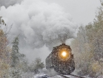 Winter train