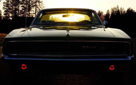 1970 Dodge Charger R/T in the Sunlight - muscle, sunlight, black, 1970, mopar muscle, mopar, car, charger, classic, dodge, muscle car