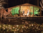 Christmas Holiday Manger