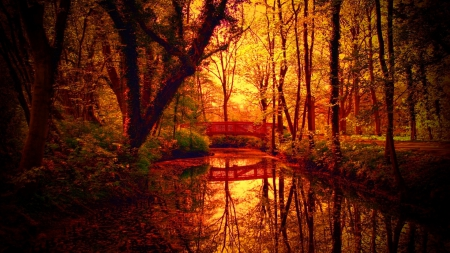 Forest bridge in autumn - fall, red, pretty, silent, autumn, glow, falling, beautiful, foliage, leaves, nice, calm, bridge, river, reflection, forest, quiet, lovely, golden, creek, trees, lake, pond, tranquil, serenity, nature