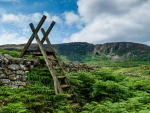 ladder over stone walls on fields in wales