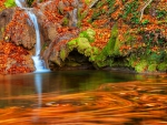 Small forest stream in autumn