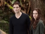 Twilight Saga (2008-2012)