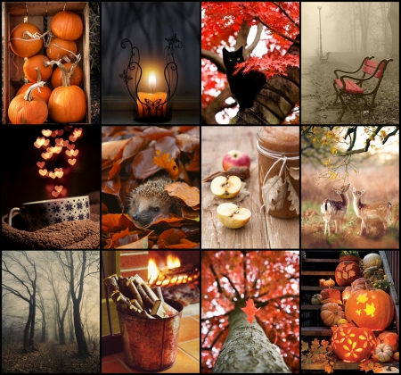 Goodbye Summer Hello Autumn Collages Abstract Background Wallpapers On Desktop Nexus Image 1573443