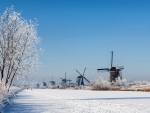 row of windmills by a frozen river