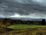 lovely grazing meadow under stormy sky