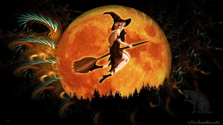 Halloween Flight - Broomstick, Orange, Moon, orange moon, Happy halloween, Halloween, Witch, Night