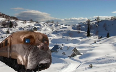 Bulldog Passenger Train - dog, snow, scenic, train