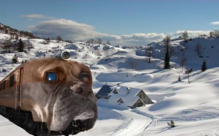 Bulldog Passenger Train - train, snow, dog, scenic