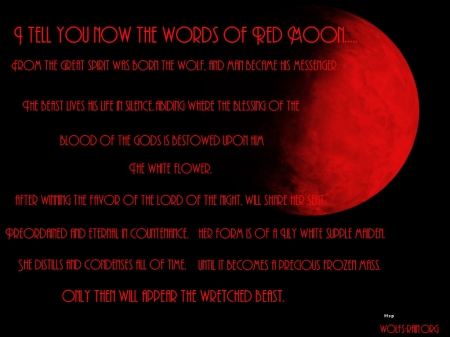 Words Of Red Moon Other Animals Background Wallpapers On Desktop Nexus Image 1579289