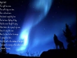 night wolf poem