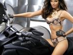 Bauty on Ducati