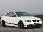 Leib BMW M3 GT500