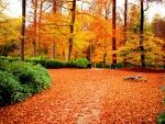 Autumn calmness