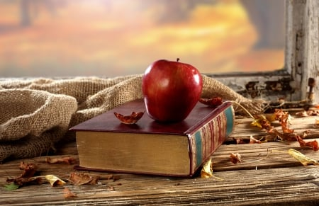 Autumn book * - Photography & Abstract Background Wallpapers on Desktop  Nexus (Image 1583539)