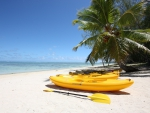 Yellow Canoes on Beach South Pacific