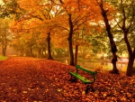 Relax in autumn park
