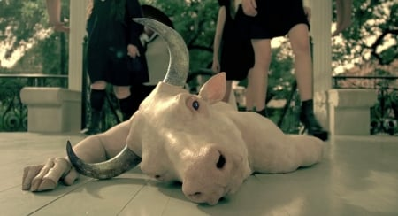 AMERICAN HoRRoR SToRY:CoVEN - american horror story, creepy, witches, minotaur, TV Series, coven