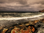 gorgeous rocky shore hdr