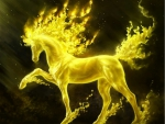 Golden Fire Horse