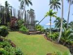 Garden in Fiji