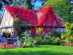 fantastic red vine covered country home hdr