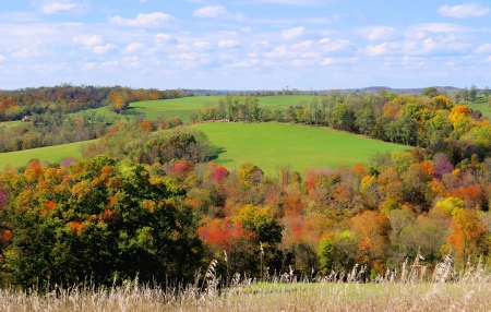 A West Virginia Autumn Day - fall, september, autumn, grass, country, sky, trees leaves, west virginia, nature, october, hill, field