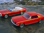 Muscle Cars - 1964 1/2 Ford Mustang Hardtop Coupe and 1967 Chevrolet Camaro SS Convertible