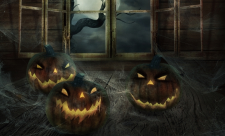 Eerie Pumpkins - Fall, webs, window, jack o lanterns, halloween, spiderwebs, tree, spiders, Autumn, pumpkins