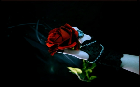 Gothic Rose 2 3d And Cg Abstract Background Wallpapers