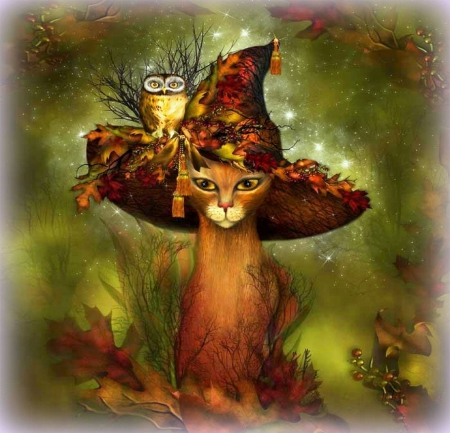 ��cat in autumn witch hat�� cats amp animals background