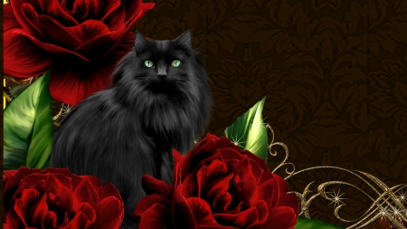Black Cat Red Roses Cats Animals Background Wallpapers On