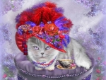 ♥Cat in Red Plumage Hat♥