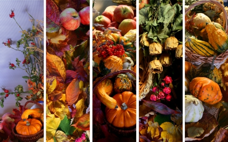 Fall Flowers And Pumpkins Wallpaper