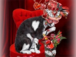 ★Cat in Valentine Steampunk Hat★