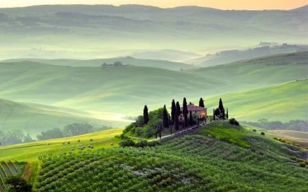 Piemont italy - beautiful, fog, photography, splendor, green, magical, peaceful, color, nature, hill, outdoor, italy