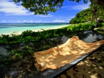 Hammock on the Beach Fiji