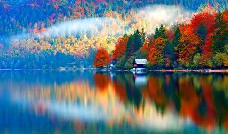 October - fall, pretty, colorful, autumn, glow, falling, shine, beautiful, foliage, mirrored, leaves, nice, reflection, lovely, golden, colors, tree, nature, branches, october