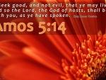 Amos 5:14