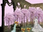 Zelda Twilight Princess Series# 3