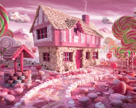 The Candy House