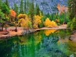 Yosemite autumn