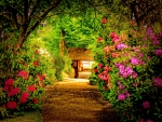 RHODODENDRON WALKWAY