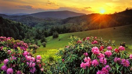 Mountain Sunrise Sunsets Nature Background Wallpapers On Desktop
