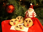 Santa's Favorite Cookies
