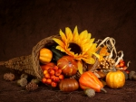 Cornucopia~Thanksgiving