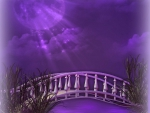 Purple Moonlight Shone Bridge