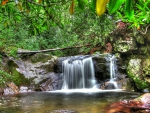 beautiful waterfall in a forest hdr